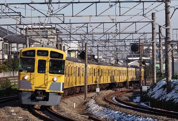 Pb253207