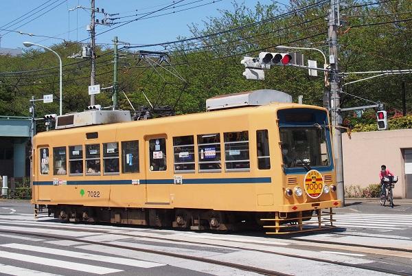 P4235296