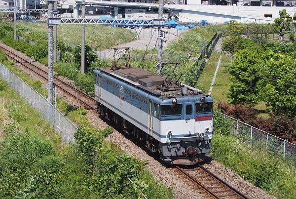P5295593